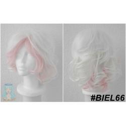 BIEL66