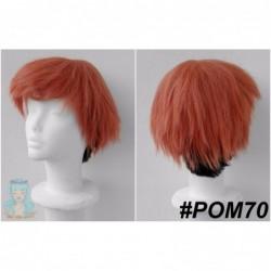 POM70