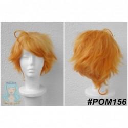 POM156