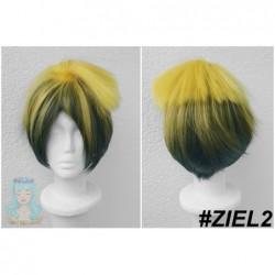 ZIEL2