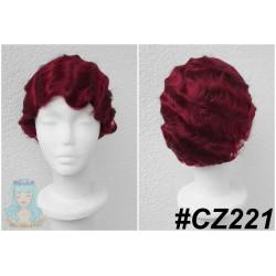 CZ221