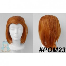 POM23